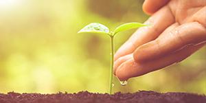 Initiatives Toward CSR